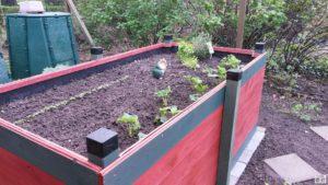 Hochbeet Im Garten Pillnitzer Gartenfreunde