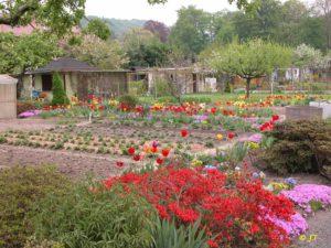 Gärten im Frühjahr